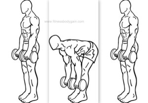 dumbbell-romanian-deadlift